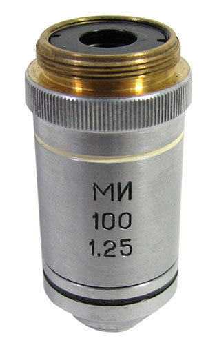 100X OBJECTIVE LENS (OIL IMMERSION)