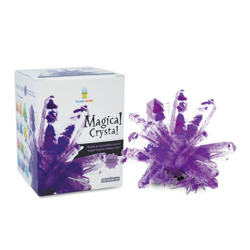 PURPLE CRYSTAL GROWING KIT