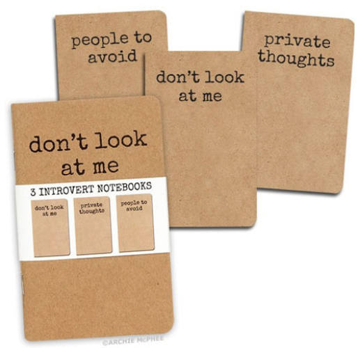 3-PACK INTROVERTS' NOTEBOOKS