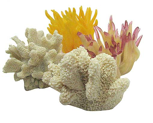 RESIN CORAL AND SEA ANEMONE REPRODUCTIONS
