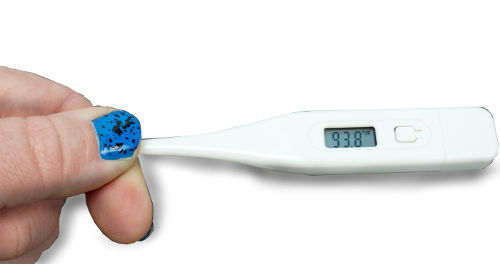 NEW DIGITAL ORAL THERMOMETER