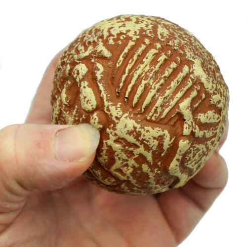 FOSSIL BOUNCER BOUNCING BALL