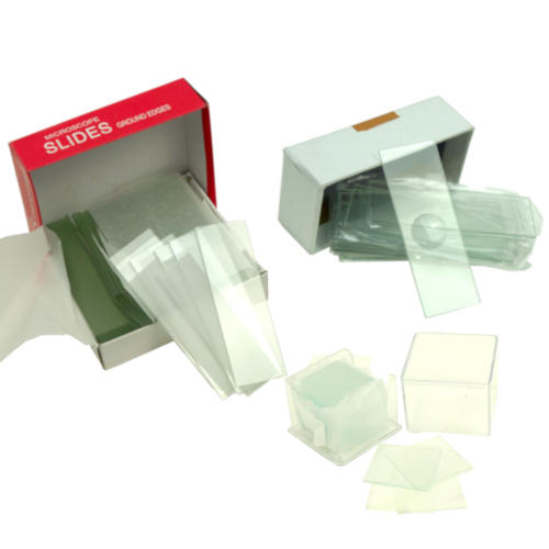 GLASS MICROSCOPE  WELL SLIDES