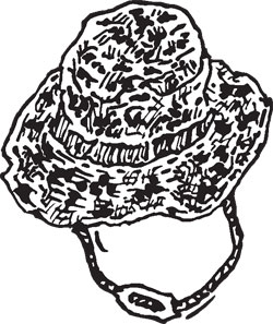 DIGITAL CAMOUFLAGE BOONIE HAT