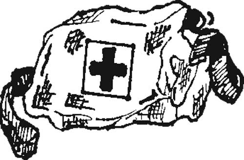 MEDIC BAG WITH SHOULDER STRAP