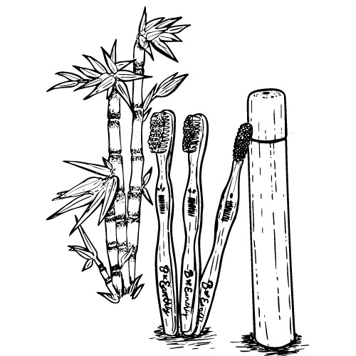 BAMBOO TOOTHBRUSHES WITH CASE