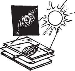 PHOTOSENSITIVE SUNPRINTERS PAPER KIT